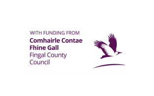 Image result for fingal logo with funding